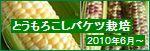 バケツ栽培 とうもろこし 2010年