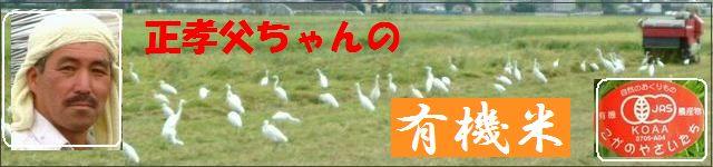 佐賀県産 有機JAS 無農薬栽培 有機米 玄米 精白米