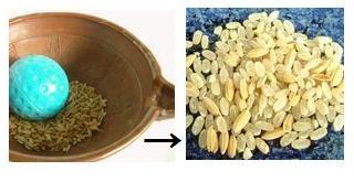 飼料米の籾すり