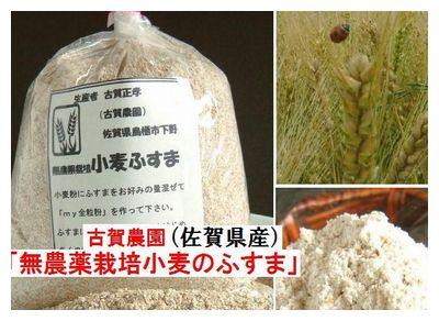 古賀農園 国産無農薬栽培小麦ふすま