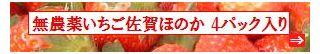 古賀農園 佐賀県産 無農薬栽培苺 佐賀ほのか4パック入り