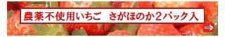 古賀農園 佐賀県産 無農薬栽培苺 佐賀ほのか2パック入り